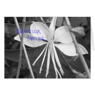 Ballerina Flower Blank Card