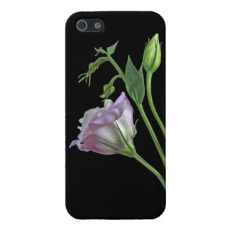Ballerina iPhone 5 Savvy Case