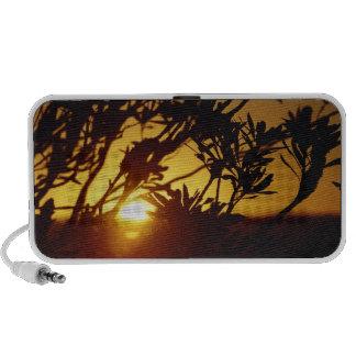 Ballina Sunset iPhone speaker