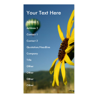 Balloon and Flower Pack Of Standard Business Cards