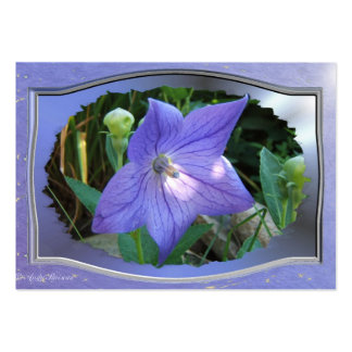 Balloon Flower w/frame ~ ATC card Business Cards