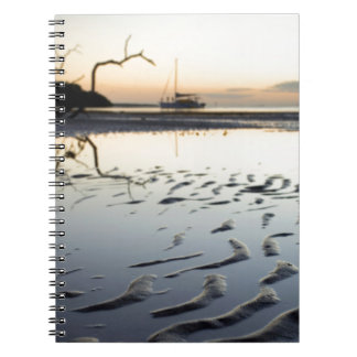 Balmy Florida Evening Notebooks