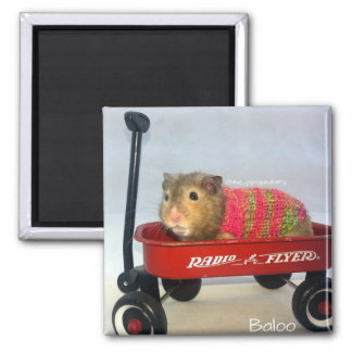 Baloo in his Red Wagon Magnet