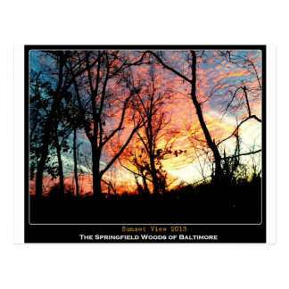 Baltimore Green Space - Sunset View Postcard