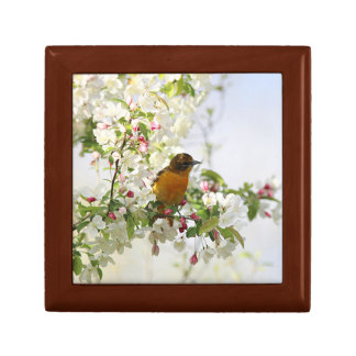 Baltimore Oriole and spring blossoms Gift Box