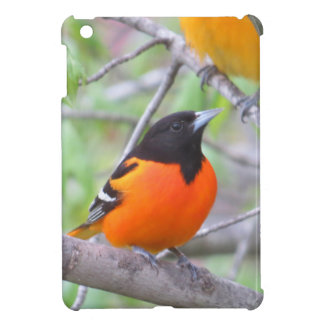 Baltimore Oriole iPad Mini Case