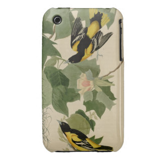 Baltimore Oriole iPhone 3 Case-Mate Cases