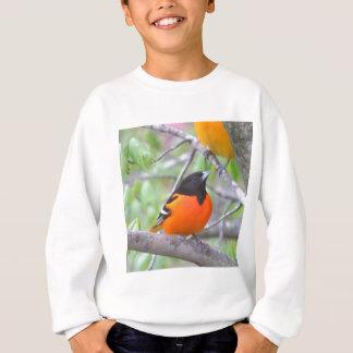 Baltimore Oriole Sweatshirt