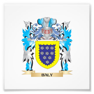 Baly Coat of Arms Photograph