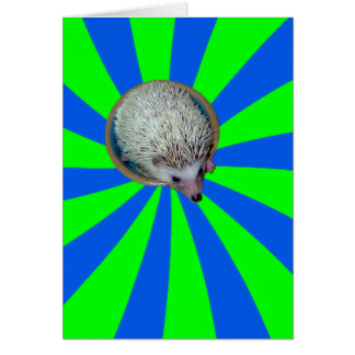 BAM! Hedgehog Greeting Card