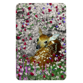Bambina the White-Tailed Fawn in Flowers I Rectangular Photo Magnet