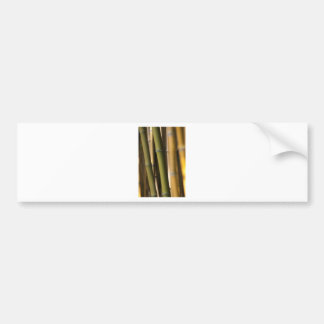 Bamboo Asia Style Bumper Stickers