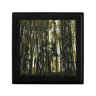 Bamboo Forest Gift Box