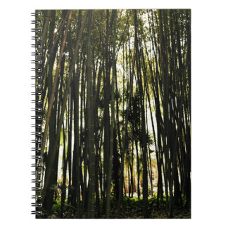 Bamboo Forest Notebooks