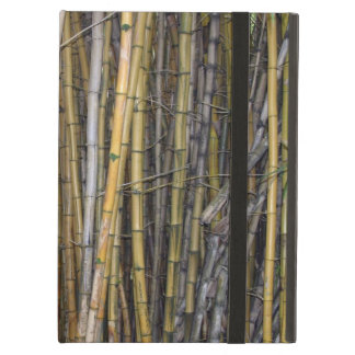 Bamboo in Hilo, Hawaii Cover For iPad Air