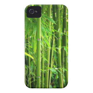 Bamboo iPhone 4 Case-Mate Case