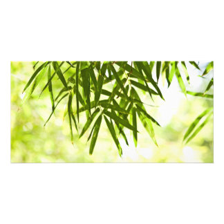 Bamboo leaves custom photo card