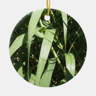 Bamboo Leaves Round Ceramic Decoration
