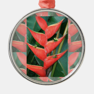 Bamboo Orchid Flower Costa Rica Gardens picnic fun Christmas Ornaments