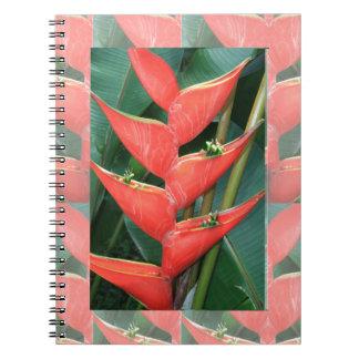 Bamboo Orchid Flower Costa Rica Gardens picnic fun Spiral Notebooks