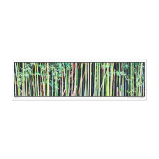 Bamboo- Panoramic Canvas Print