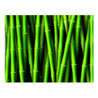 Bamboo tree natural pattern hipster fun trendy chi postcard