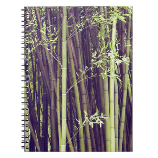 Bamboo trees spiral notebook