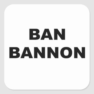 Ban Bannon Square Sticker