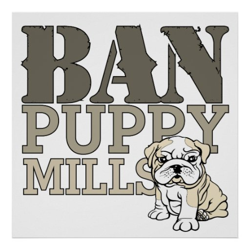 Ban Puppy Mills Posters