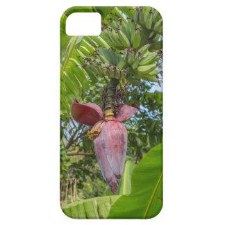 Banana plantation in Sok Kwu Wan Lamma Island iPhone 5 Cover