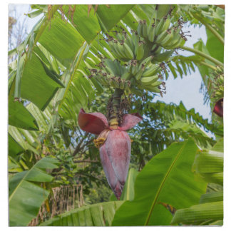 Banana plantation in Sok Kwu Wan Lamma Island Napkin