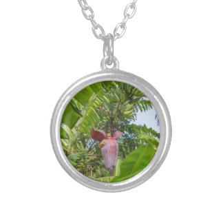 Banana plantation in Sok Kwu Wan Lamma Island Silver Plated Necklace