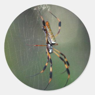 Banana Spider Round Sticker