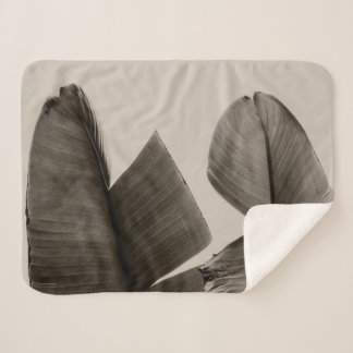 Banana Tree Leaves in Sepia Sherpa Blanket