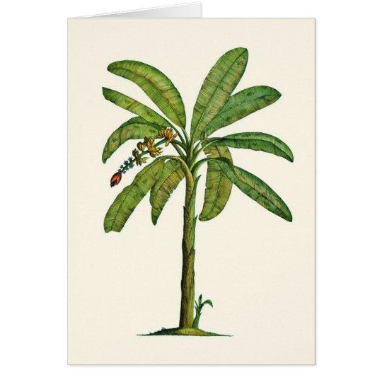 Banana Tree Pen and Ink Card