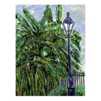 Banana Trees at Jackson Square Postcard