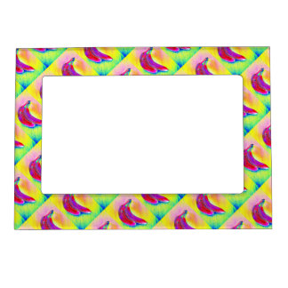 Bananas in a Rainbow Magnetic Picture Frame