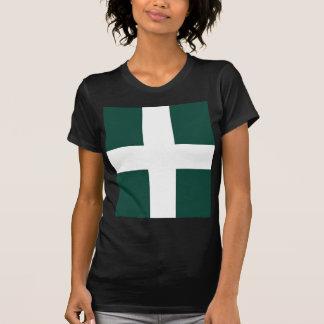 banat region flag T-Shirt