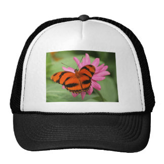 Banded Orange Butterfly Trucker Hat