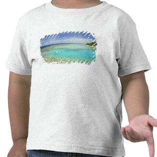 Bandos Island Resort, North Male Atoll, The Tee Shirts