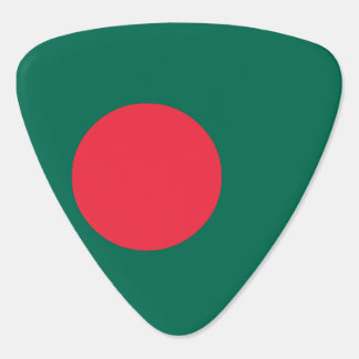 Bangladesh Flag Guitar Pick