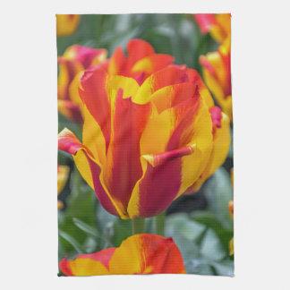 Banja Luka tulips kitchen towel