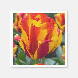 Banja Luka tulips Paper Serviettes