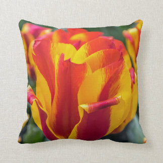 Banja Luka tulips throw cushion