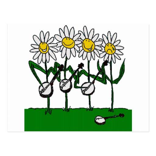 Banjo Flowers Post Card