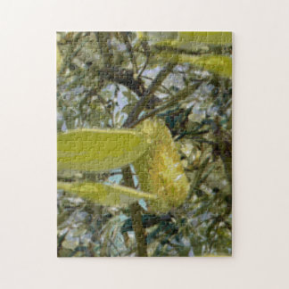 Banksia in the Sunshine Jigsaw Puzzle