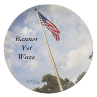 BANNER YET WAVE AMERICAN FLAG MELAMINE PLATE