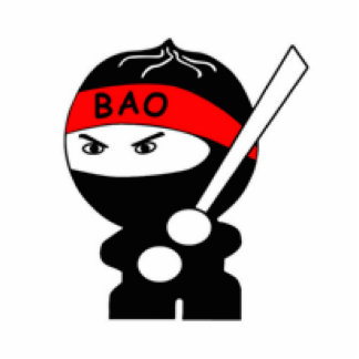 BAO Fighting Ninja Award Standing Photo Sculpture
