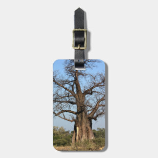 Baobab Tree Luggage Tag