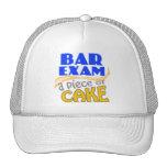 Bar Exam - Piece of Cake Mesh Hat